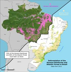 Deforestation of the Amazon and Atlantic Forests in Brazil.