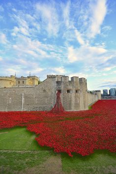 This stunning installation of 888,246 ceramic poppies honors the lives lost in WWI