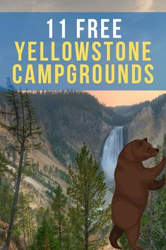 Yellowstone Campgrounds are expensive. Fear not, camper - we're here to help! Here are 11 Free camping spots in Yellowstone. Yellowstone Campgrounds, Visit Yellowstone, Yellowstone Camping, Yellowstone Vacation, Best Campgrounds, Wyoming Vacation, New Orleans, Las Vegas, Camping Checklist