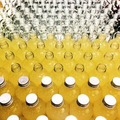 http://ift.tt/1BFYJUy  KombuchaTastingParty...       http://ift.tt/1BFYJUy   KombuchaTastingParty @baimiang_healthy_shop Rain Hill this weekend 10am.-2pm. #simple #refreshing #luxurious #lifestyle #raw #organic #tea #bangkok #brooklyn #happiness #nature #fermentation #probiotics #antioxidants #healthyliving #detox #environment #healthydrinks #beautyshot #organicthailand #glutenfree #vegetarian #design #slowfood #nongmo #vscocam #pureluckkombucha #allabouttea #detoxwhileyouretox  ..