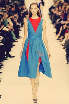 Christian Dior Fall 2014 Rtw Look