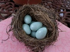 Real Birds Nest with Seven Robin Egg Blue by casabellaporcelain https://www.etsy.com/listing/207276657/real-birds-nest-with-seven-robin-egg?ref=cat_gallery_23&ga_ref=auto-1&ga_search_query=egg+shaped+soap&ga_order=most_relevant&ga_view_type=gallery&ga_ship_to=US&ga_search_type=all