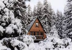 5 Cozy Cottages Near Calgary You Can Rent For Super Cheap This Winter featured image Cozy Cabin, Cozy Cottage, Forest Camp, Mountain Cottage, Mountain Homes, Places To Rent, Cabin In The Woods, Cabins And Cottages, Winter Pictures