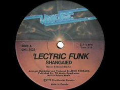 Lectric Funk - Shangaied