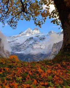 Grindelwald, Switzerland - by lisa310179