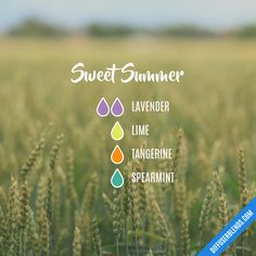 Sweet Summer Essential Oils Diffuser Blend ••• Buy dōTERRA essential oils online at www.mydoterra.com/suzysholar, or contact me suzy.sholar@gmail.com for more info.