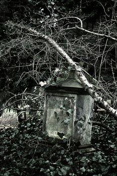 Alter Friedhof Saarbrücken Old Cemetery Saarbrücken