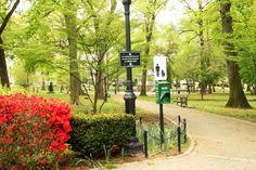 #westerleighpark #westerleigh #statenislandparks #statenisland #parks