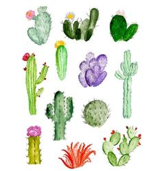 Find the desired and make your own gallery using pin. Drawn cactus sketch - pin to your gallery. Explore what was found for the drawn cactus sketch Painting Inspiration, Art Inspo, Guache, Cactus Y Suculentas, Watercolor Art, Simple Watercolor, Watercolor Cactus, Watercolor Animals, Watercolor Background