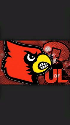 L1C4 Louisville Cardinals Basketball, Football And Basketball, University Of Louisville, My Old Kentucky Home, I Card, Team Logo, Count, Sports, Baby