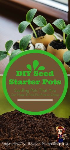 Frugal DIY Seed Starter Pots Free and Cheap - get started making your own seedling pots today!