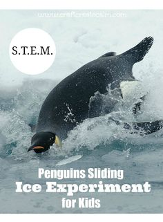 Learn about friction with a fun ice experiment! S.T.E.M. activity using ice for kids, winter unit study.