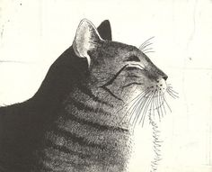 Original Cat Etching 'Cool' by Kay McDonagh.  Original prints available.