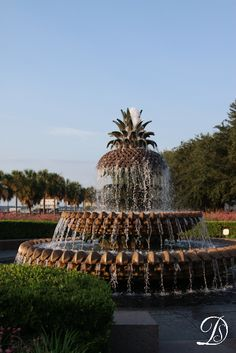 Pineapple Fountain at Waterfront Park in Charleston, South Carolina