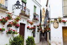 CALLEJA DE LAS FLORES IN CORDOBA, SPAIN: Calleja de las Flores is a cute, narrow street adorned by hundreds of flowers. This adorable postcard scene has become an emblem of the charming city of Cordoba in the heart of Andalusia in Spain.