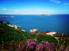 Howth Ireland this summer...  Best place ever