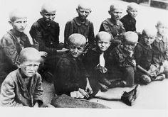 jasenovac allemaal meisjes