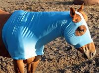 Sewing for your horse!!