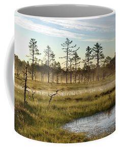 #estonia #bog #earlymorning #marsh #mug #giftidea Mugs For Sale, Art For Sale, Nature Artists, Nature Artwork, Unique Gifts For Men, Pin Pin, Botanical Art, Art Market, Beautiful Artwork