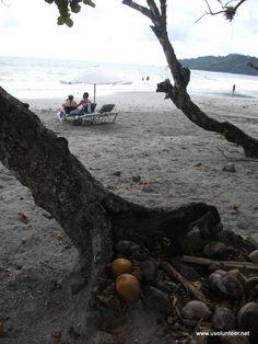 Volunteer Abroad in Costa Rica, Ghana & Thailand Volunteer Overseas, Volunteer Groups, Volunteer Work, Volunteer Opportunities Abroad, Sandy Beaches, Free Time, Volunteers, Rafting, Ghana