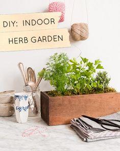 DIY herb gardens to love.