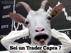 Se nella tua operatività da Trader, c'è qualcosa che non va, come Perdite Costanti, Stress, Paure, Ansie, è perchè non sei Disciplinato abbastanza. Leggi l'articolo completo:  http://www.thetrader.it/non-capisco-perche-molti-trader-ragionano-come-capre/