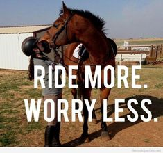 182 Best Horse Riding Quotes Images Horse Quotes Equestrian