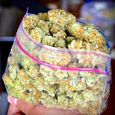 www.legalizedcannabisdoctor.com Cannabis Doctor is a Fast, Friendly, Discrete, Reliable cannabis online shop which ships top grade bud around the world. Buy marijuana Online USA,Buy weed online Australia,order Cannabis Online UK. +1 (970) 578-9743