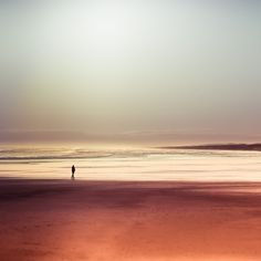Oceans = happy place