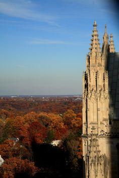 about-usa:  Washington National Cathedral - Washington D. C. - USA (byehpien)