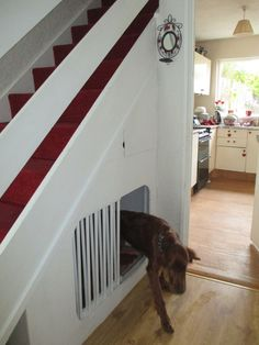 Bed Under Stairs, Under Stairs Dog House, Built In Dog Bed, Dog Spaces