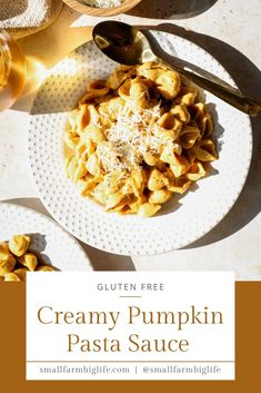 This healthy recipe for gluten free creamy pumpkin pasta sauce is so easy to make! You can have a simple homemade sauce ready for dinner quickly. With a few healthy ingredients and gluten free pasta you can have a weeknight meal on the table in no time! #glutenfree #recipe #pasta #dinner
