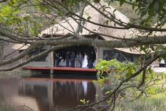 Insingizi Game Lodge and Spa Durban Wedding Venue