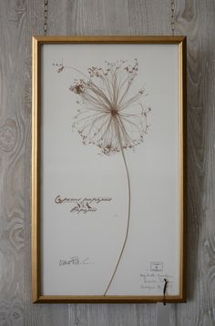Curated by Kristin | Single papyrus botanical from the gardens of Charleston