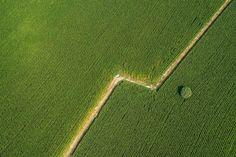 Fotograf Field from the sky von Fabio Polosa auf 500px