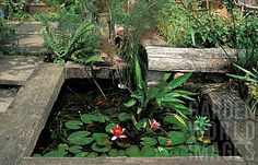 Quality Horticultural Images and Plant and Garden Photos Picture Library with over 2 Million Images! Small Fish Pond, Small Ponds, Raised Pond, Patio Pond, Goldfish Pond, Railway Sleepers, Pond Fountains, Pond Water Features, Fish Ponds