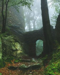 Forest ruins, Karkonosze Mountains, Poland. Looks intriguing, doesn't it? Re-pinned by #Europass