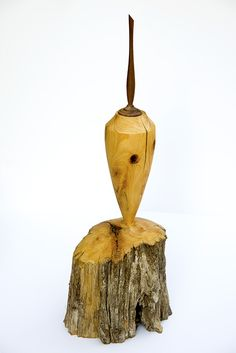 little vase from decayed cypress, top in walnut, high 50 cm. by jan nackaerts