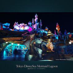 Tokyo DisneySea Mermaid Lagoon   東京ディズニーシー マーメイドラグーン