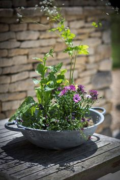 Crafted in galvanised steel, the Bibury Table Top Galvanised Planter has a stunning curved design and steel handles make it a wonderful centrepiece for any garden table.