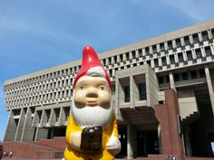 the Boston Garden Gnome outside Boston City Hall!  follow his adventures at www.bostongardengnome.com!