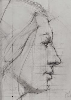 Construction | The Art of Nicholas McNally Drawing Heads, Daily Drawing, Life Drawing, Drawing Things, Art Sketches, Art Drawings, Face Structure, Art Education Lessons, Tinta China
