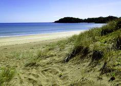 Woolleys Bay, Tutukaka Coast, Northland, New Zealand New Zealand, Scenery, Coast, Beach, Water, Outdoor, Gripe Water, Outdoors, Landscape