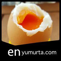 yumurta siparis