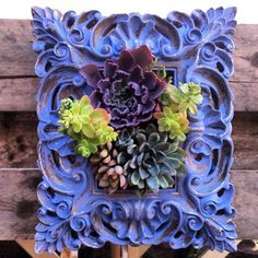Hey, I found this really awesome Etsy listing at http://www.etsy.com/listing/174860907/framed-hanging-succulent-garden-ready-to