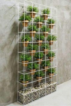 Vertical Garden Design, Herb Garden Design, Diy Garden, Garden Plants, Vertical Gardens, Vertical Planter, Garden Fences, Garden Privacy, Garden Walls