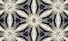 Free Pattern, Bead, Patterns, Paper, Design, Block Prints, Beads, Sewing Patterns Free
