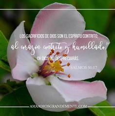 """""""Los sacrificios de Dios son el espíritu contrito; al corazón contrito y…"""