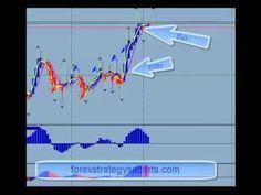 Download New Forex Bressert Exposure Indicator Forex Trading
