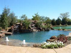 Natural Swimming Pools  waterfireviews.com